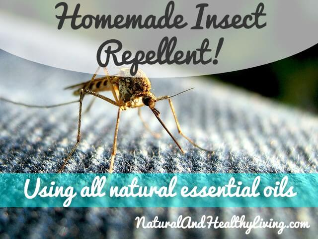 homemade-insect-repellent