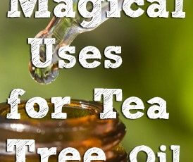 tea-tree-oil-uses