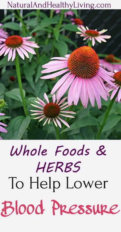 herbs that lower blood pressure