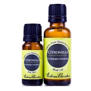 Top 7 uses for citronella essential oil!